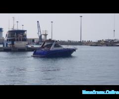 Прокат моторного катера - Sea Ray 340 «Моцарт» - Изображение 3/7