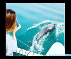 Прогулки на катере - возможна встреча с дельфинами! - Изображение 3/6