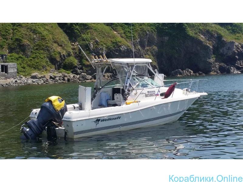 Морская рыбалка с катера Wellcrat 240 coastal до 6 человек - 3/7