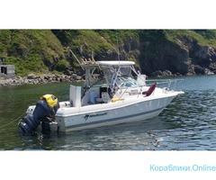Морская рыбалка с катера Wellcrat 240 coastal до 6 человек - Изображение 3/7