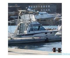 Морские прогулки на 30 футовом катере
