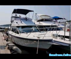 Рыбалка, аренда катера