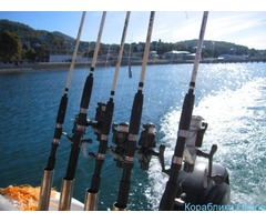 Морская рыбалка в Лоо на катере