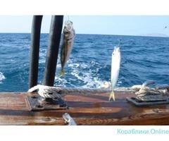 Морская рыбалка с купанием в Бухте Инал