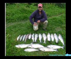 Рыбалка, морские прогулки, туры на Камчатке - Изображение 6/8