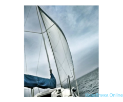 Прогулки на американской яхте под парусом и катере - Изображение 5/7