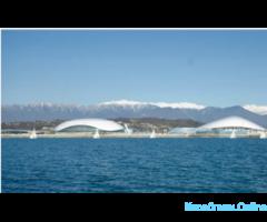 Прогулки по морю на яхте. Встреча с дельфинами - Изображение 2/6