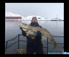 Морская рыбалка. Териберка. Кольский п-ов