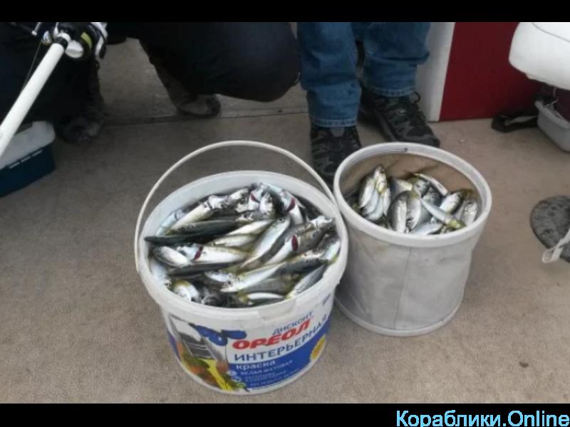 Рыбалка в открытом море. В любое время года - 3/8